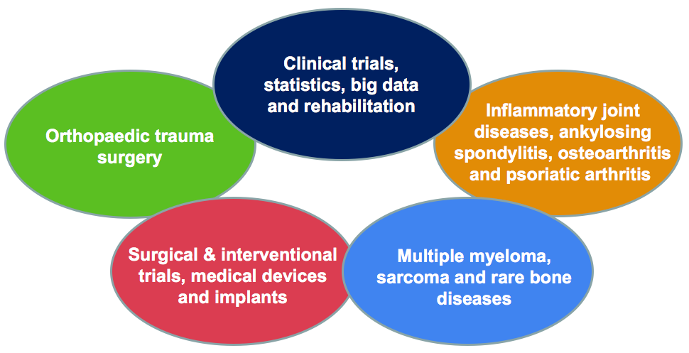 NIHR Biomedical Research Centre sub themes