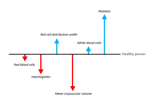 Diagram shows from least deviation to highest from a healthy person: Increased white blood cells, red cell distribution width, platelets and decreased Red blood cells, haemoglobin, mean corpuscular volume,