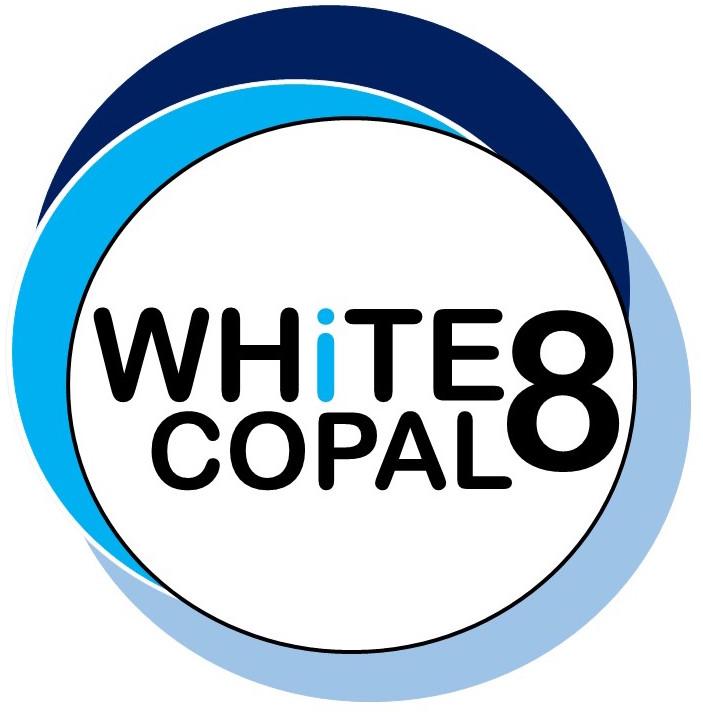 White-8 Trial Logo