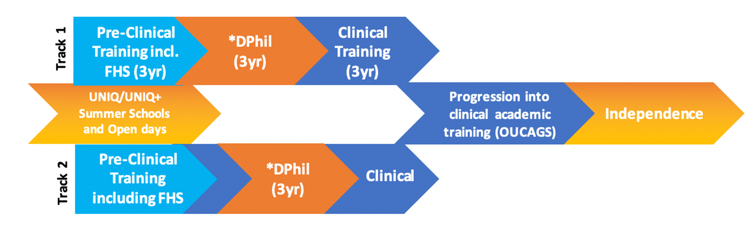 OxKEN Selection Criteria & Eligibility: chart showing training as clinician scientists