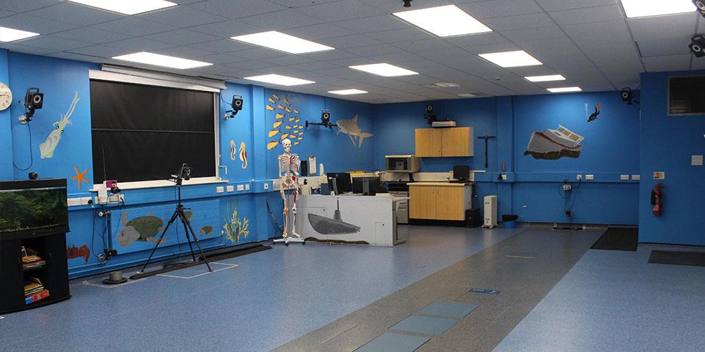 Gait-Lab-Room.jpg